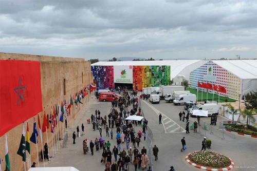 الإمارات العربية المتحدة ضيف شرف الدورة الحادية عشرة للمعرض الدولي للفلاحة بمكناس