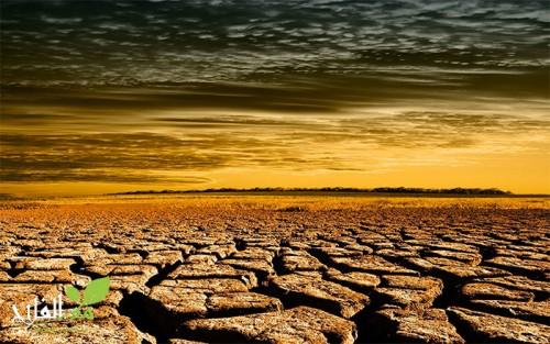 برنامج مكافحة آثار تأخر التساقطات المطرية ينطلق في مرحلته الأولى بجهة مراكش أسفي.