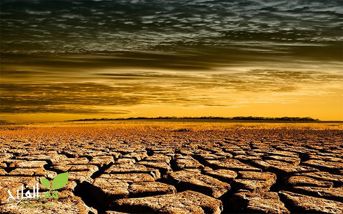مخطط مواجهة تداعيات تأخر التساقطات المطرية بالأقاليم الجنوبية