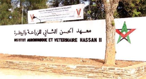 Institut agronomique et vétérinaire Hassan II