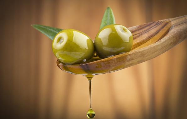 تخصيص أزيد من 50 مليون درهم لتمويل مشاريع زراعة الزيتون بتيزنيت في إطار مخطط المغرب الأخضر