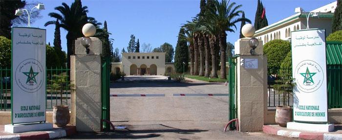 المدرسة الوطنية للفلاحة بمكناس كونت منذ تأسيسها أزيد من 3500 إطار منهم 450 أجنبيا
