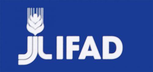 الصندوق الدولي للتنمية الزراعية يفتح رسميا مكتبه بالمغرب