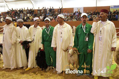 تسليم الجوائز والشواهد على أفضل وحدات الإنتاج والعارضين والمشاركين في المعرض الدولي للفلاحة بالمغرب