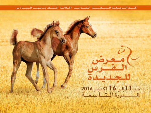 دولةالإمارات العربية المتحدة، ضيف شرف معرض الفرس الجديدة