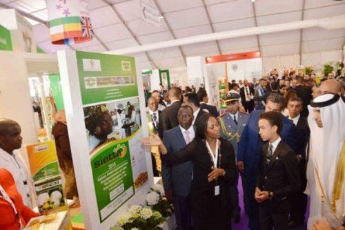 المشاركة الإيفوارية في المعرض الدولي للفلاحة بالمغرب، مناسبة لتعزيز التعاون جنوب-جنوب مع المغرب