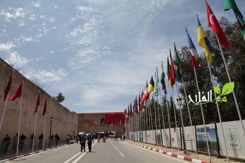 حول الملتقى الدولي للفلاحة بالمغرب في دورته 12 ما بين 18 و 23 أبريل المقبل