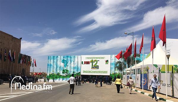 المناظرة الوطنية للفلاحة.. تنظيم الدورة العاشرة يوم 23 أبريل بمكناس