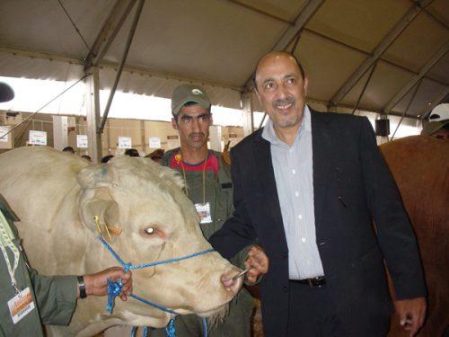 انتخاب السيد كريمين محمد رئيسا للفدرالية البيمهنية للحوم الحمراء