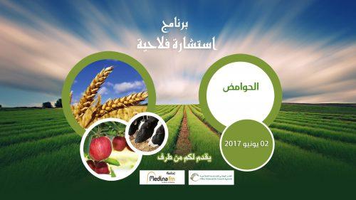 نصائح وإرشادات عامة حول إنجاح مختلف العمليات المرتبطة بزراعة الحوامض