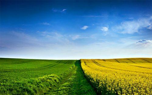 افتتاح المنتدى الجهوي السابع للفلاحة المستدامة بالرشيدية