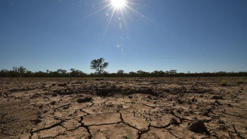 الجفاف وشح الأمطار يكتسح الأراضي الفلاحية جنوب بولونيا