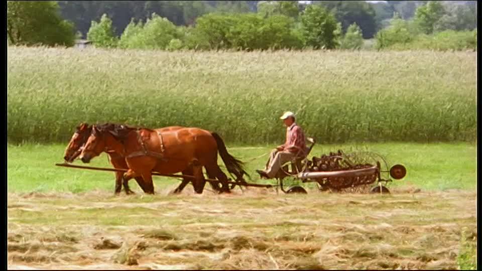 بولونيا تدعو إلى مواصلة تطوير السياسة الزراعية المشتركة للاتحاد الأوروبي ومنح كل الدول نفس الفرص
