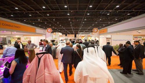 المغرب ضيف شرف معرض تكنولوجيا تربية الدواجن في الشرق الأوسط وإفريقيا بأبوظبي