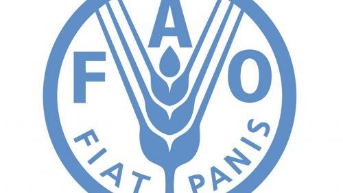 الفاو ومنظمة التعاون الاقتصادي والتنمية تدعوان إلى الاستثمار المسؤول في الزراعة.