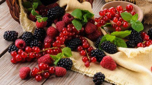 حوض اللوكوس يستحوذ على إنتاج 80 في المائة من الفواكه الحمراء الصغيرة بالمغرب