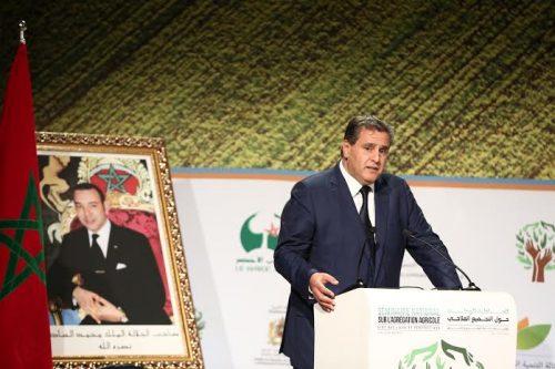 مخطط المغرب الأخضر حقق نتائج جيدة بفضل دعمه لعدد من مشاريع التنمية القروية بإقليمي الحوز وقلعة السراغنة