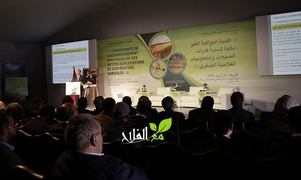 فيديو.. تقديم مشاريع مجموعة القرض الفلاحي للمغرب في المواكبة غير المالية للفلاحين الصغار
