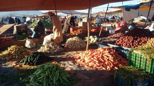 """جولة في سوق اربعاء سيدي سليمان مع التعاضدية الفلاحية المغربية لتأمين """"مامدا"""""""