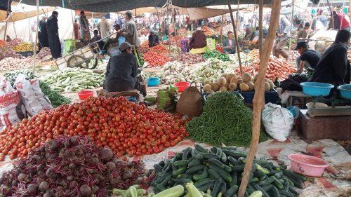 سوق سبت جزولة مع التعاضدية الفلاحية المغربية للتأمين