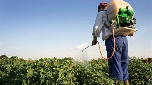 المصالح المختصة  تشن حربا على مبيدات فلاحية تتسبب في أمراض خطيرة