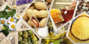 جهة طنجة – تطوان – الحسيمة … قطاع النباتات العطرية والطبية يزخر بمؤهلات كبيرة