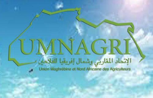 تونس تحتضن يومي 12 و 13 من هذا الشهر مؤتمر الاتحاد المغاربي وشمال افريقيا للفلاحين