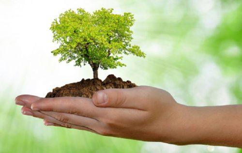 """""""تعزيز مقاومة الفلاحة لانعكاسات التغيرات المناخية"""" محور يوم دراسي بمكناس"""