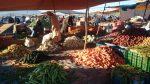 سوق أحد ميدلت … التوعية بأهمية التحفيظ العقاري ورصد لأهم المؤهلات الفلاحية