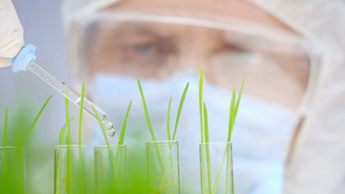 ندوة دولية بتارودانت حول موضوع التكنولوجيا الحيوية الخضراء