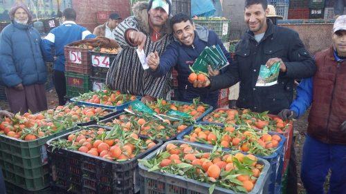 سوق أحد دمنات … مؤهلات فلاحية مهمة ووعي بأهمية التحفيظ العقاري