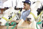 """SIAM 2019… من 16 إلى 21 من شهر أبريل تحت شعار """"الزراعة رافعة للتشغيل ومستقبل العالم القروي """""""
