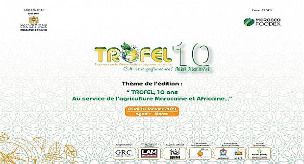 10 يناير تنظيم الدورة العاشرة للجائزة الوطنية للخضر والفواكه (تروفيل 2019)