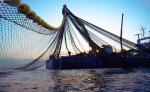 المغرب وإستراليا زيارة لتعزيز التعاون في مجالي الفلاحة والصيد البحري