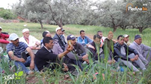تغطية إذاعة مدينة إف إم للمدرسة الحقلية حول تسميد الزيتون بجماعة التوامة جهة مراكش أسفي